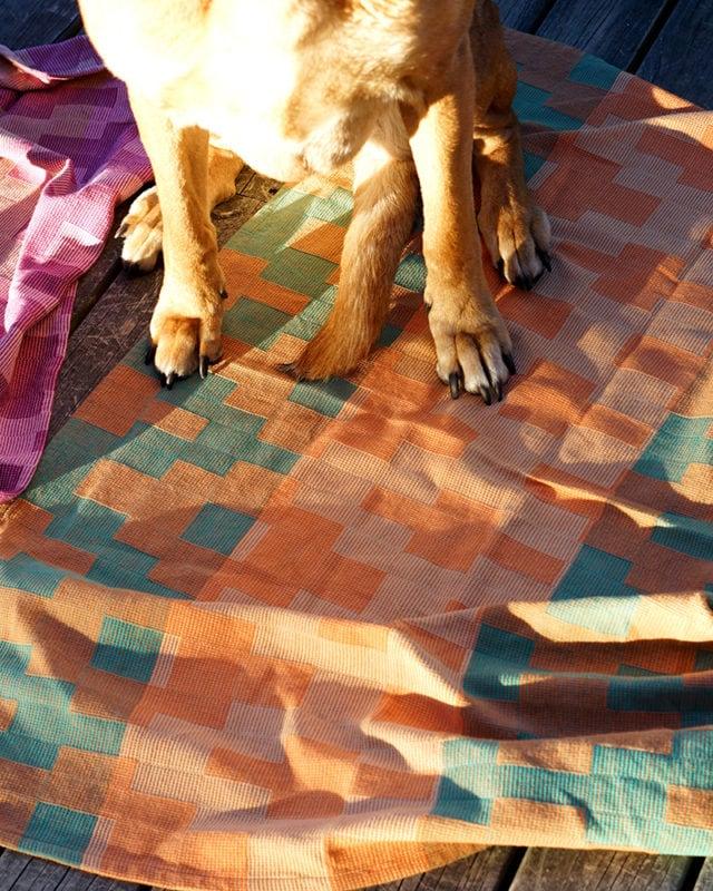 Dog_Blanket_DSC01073